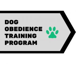 Dog Obedience Training Program